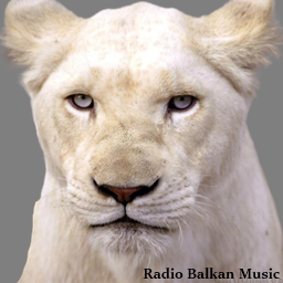 Radio Balkan Music avatar